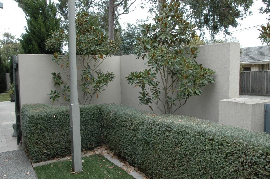 before installation of fake ivy hedge panels