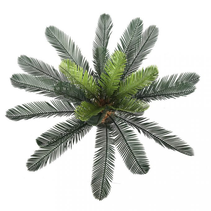 artificial cycas plant leaves