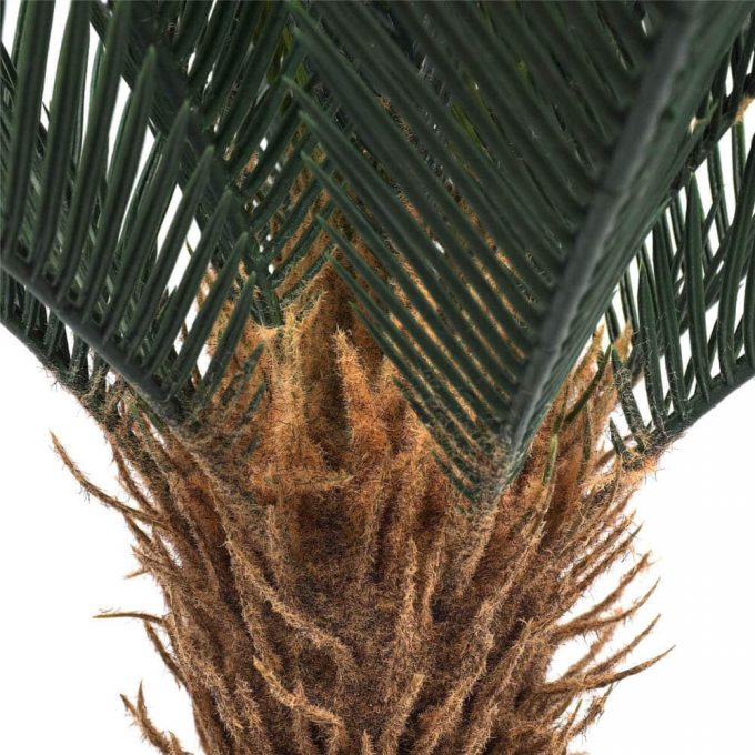 close up of the fake cycas plant trunk