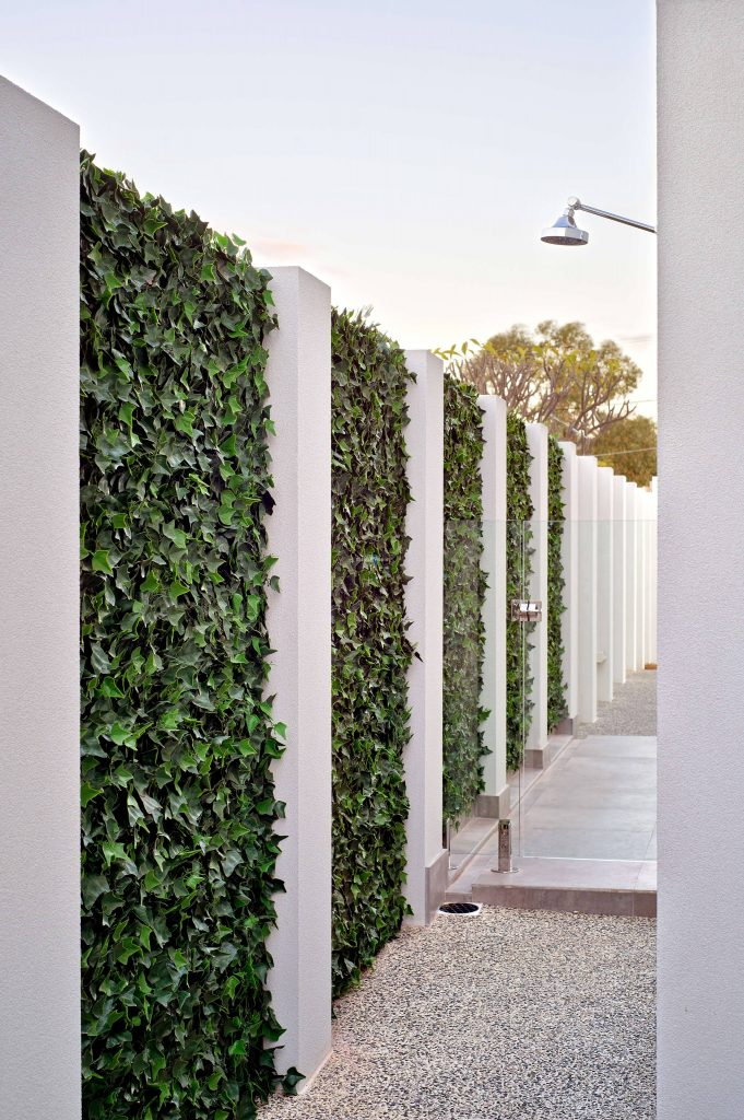 Fence With Green Wall Plants