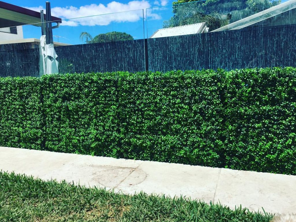 Bright Buxus Hedges Fake Hedges Bright Green