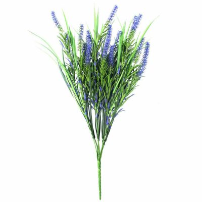 Long Stem Purple Lavender Plant