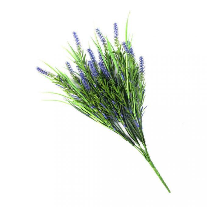 Long Stem Purple Lavender Plant