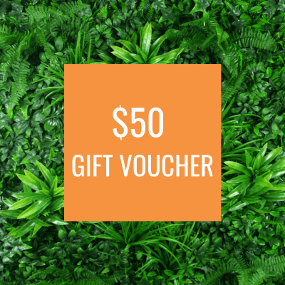 DP Gift Voucher for artificial greenery $50