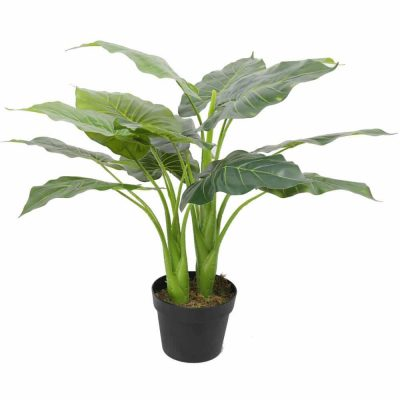 fake potted taro plant