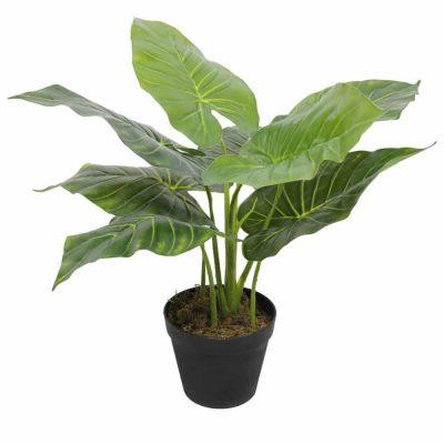 small tambour cabinet fake plant - taro plant