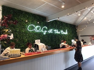 Artificial green wall behind a bar as an example of use in a retail space