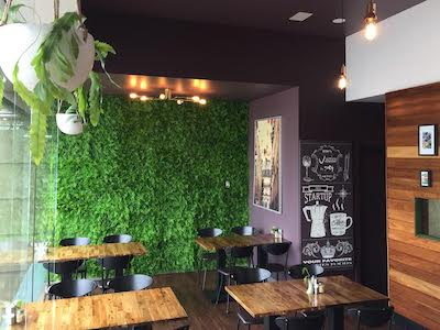 How to use green walls in a fit out - artificial green wall in a cafe space