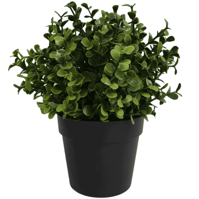 small potted artificial recycled buxus plant