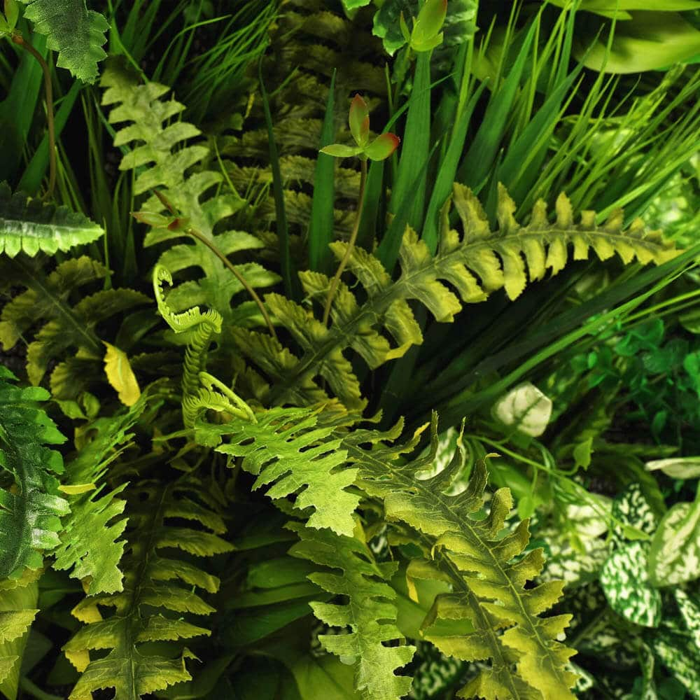 Evergreen Bespoke Vertical Garden / Green Wall 90cm X 90cm