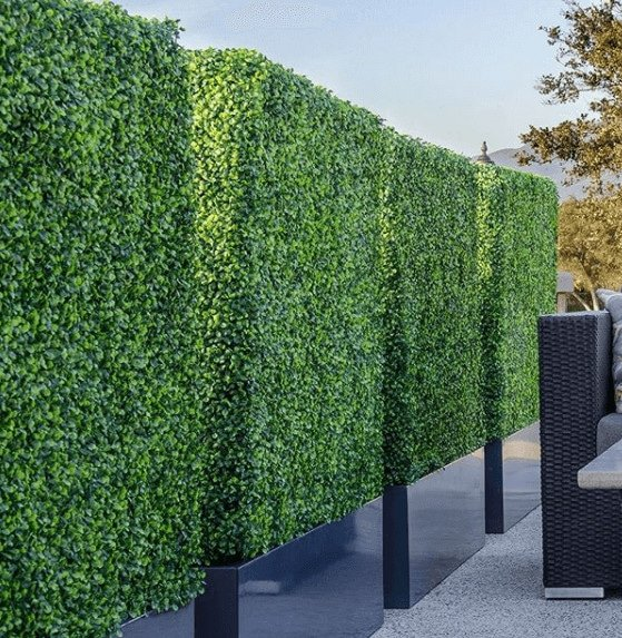 Boxwood Hedges With Planter1