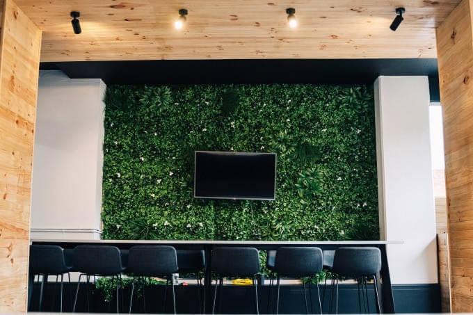 Office Green Wall Sydney With A TV Screen