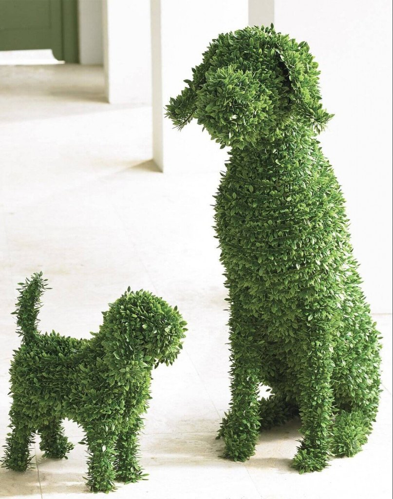 Topiary Dogs Boxwood