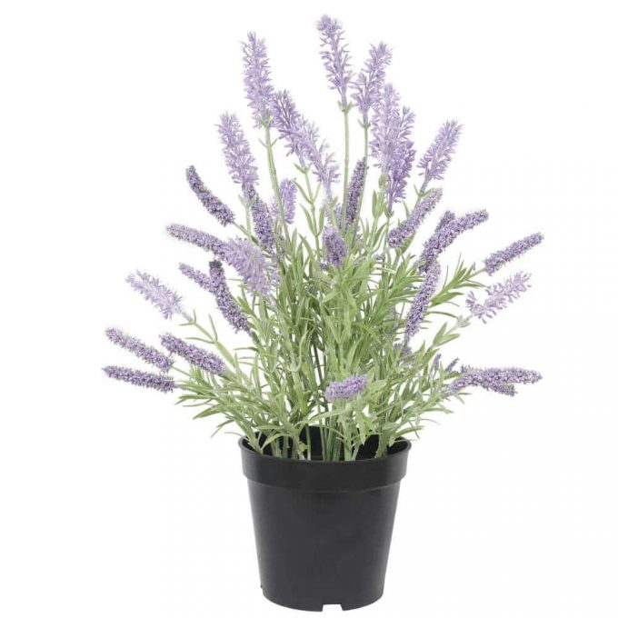 artificial lavender plant in a black pot