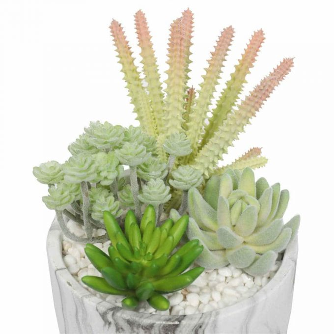 artificial succulent plant with pebbles