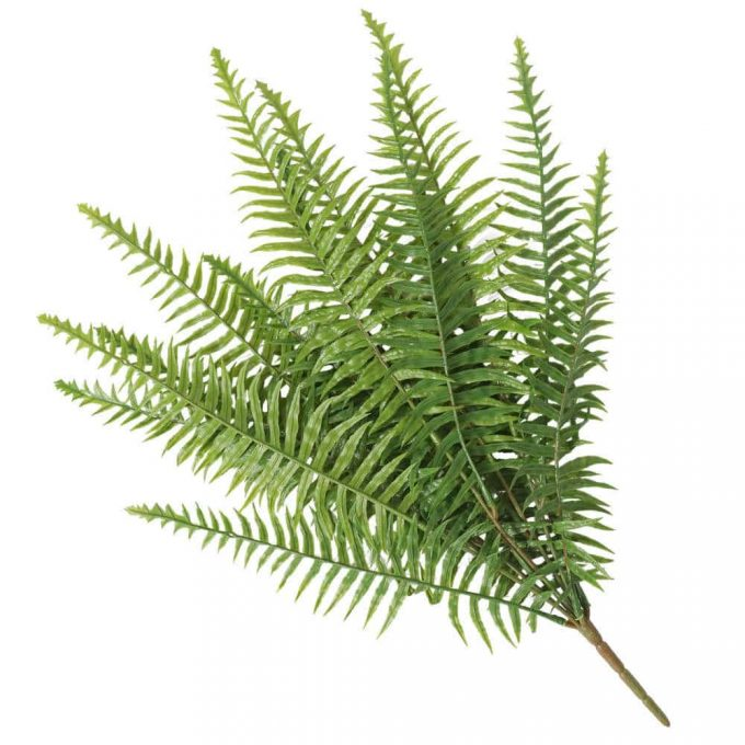 Artificial fern suitable for outdoors