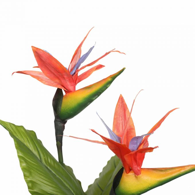 flowers of artificial bird of paradise plant