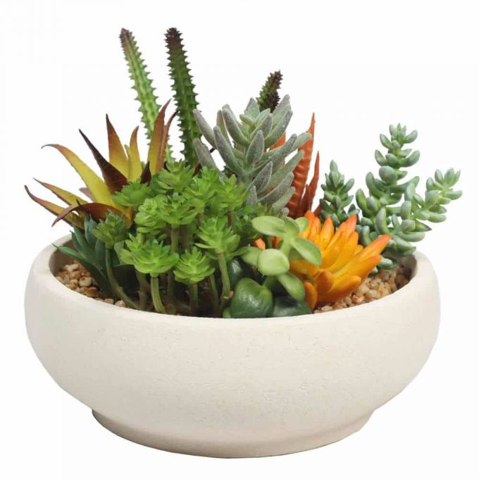 artificial succulent bowl with with stone pot