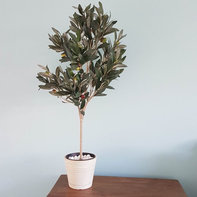 unique plant pots Australia with an fake olive tree