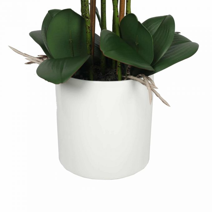 faux potted orchid - white bowl
