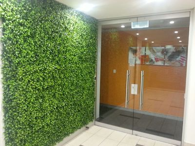 Use greenery to spruce up your office post covid-19