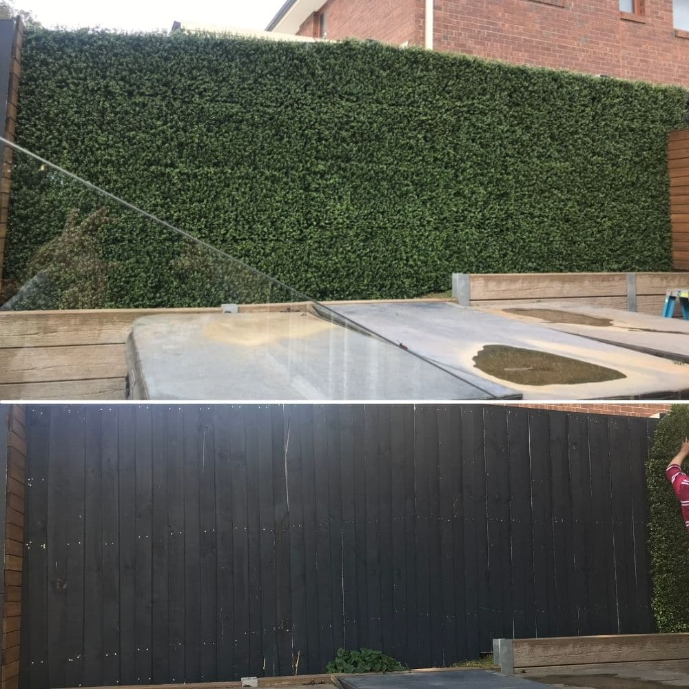 backyard renovation with fake buxus hedges