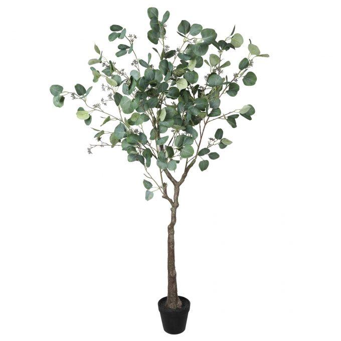 Potted Australian Artificial Eucalyptus Tree (Red Box Eucalyptus polyanthemos )