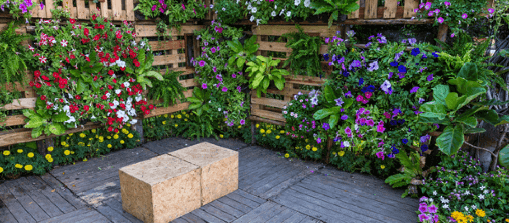Maintaing a vertical garden in the home or for events - garden maintenance tips