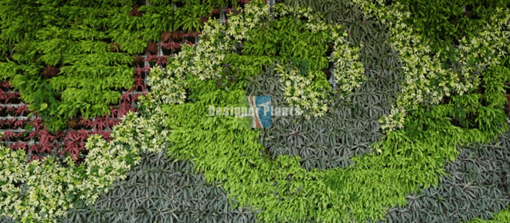 spiral and shape vertical garden wall design